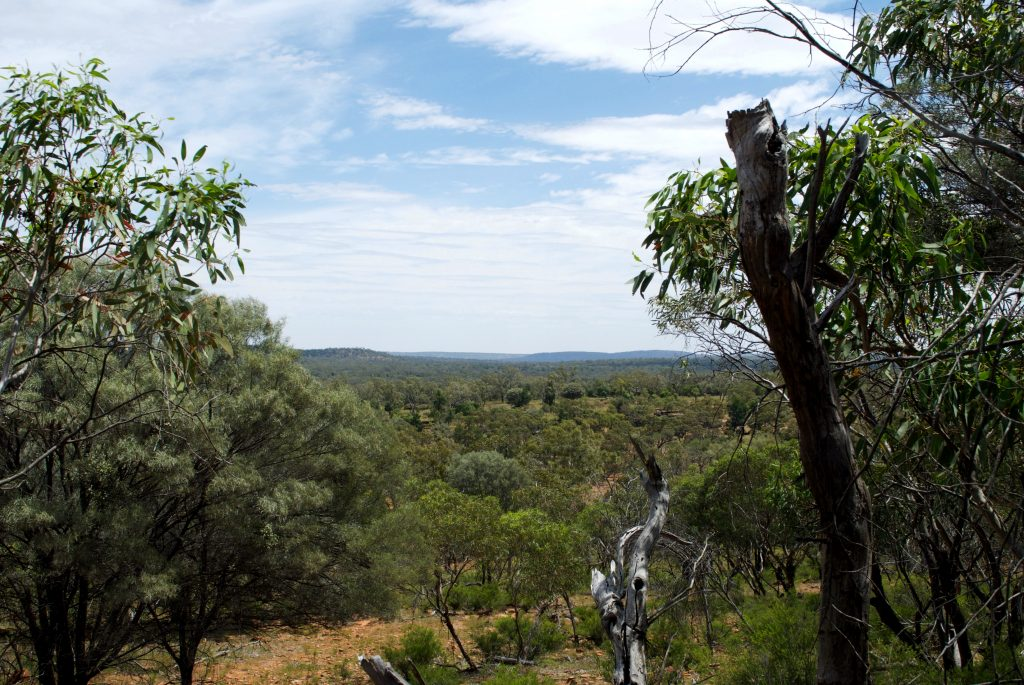 mount-grenfell-view1